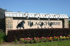 homes for sale in blackhorse ranch cypress texas